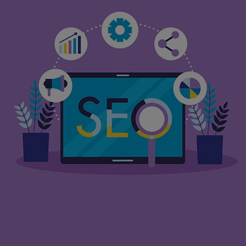 Local SEO, Small Business SEO, Enterprise SEO, Which SEO service is better for you?